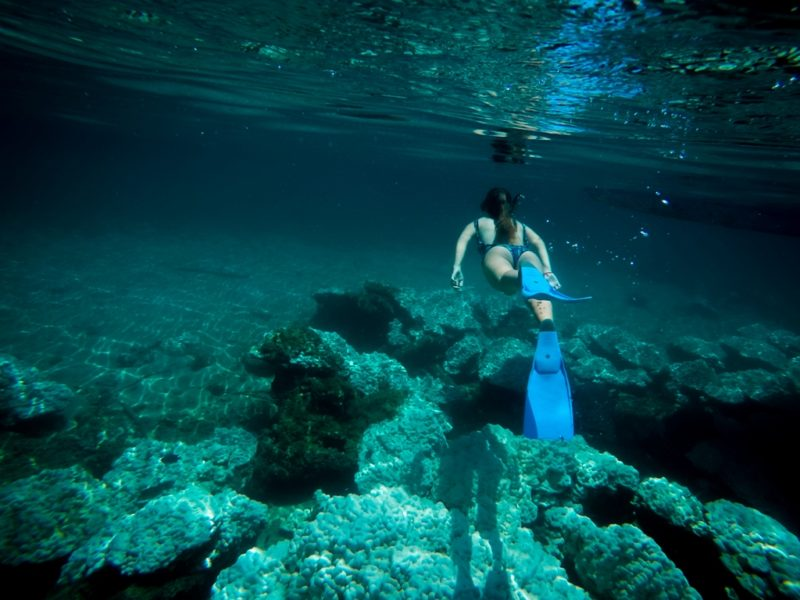 pavones golfo dulce snorkeling