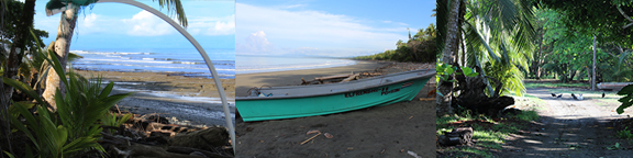 Pilon Pavones Costa Rica