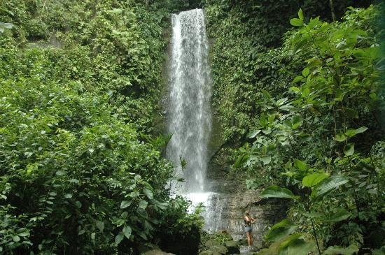 tiskita-jungle-waterfall-pavones-costa-rica